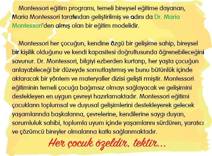 neden-montessori-egitimi-dt